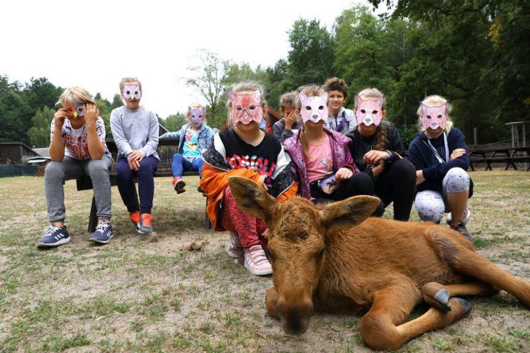 Łoś Florian stale towarzyszy dzieciom podczas ich wizyt w Leśnej Osadzie Edukacyjnej.