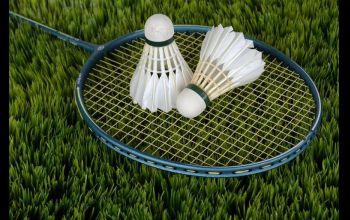 Wola Krzysztoporska: Mistrzostwa gminy w badmintona