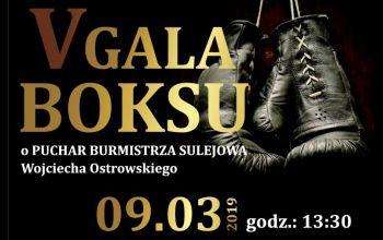 V Gala Boksu w Sulejowie. Powalczą o puchar burmistrza