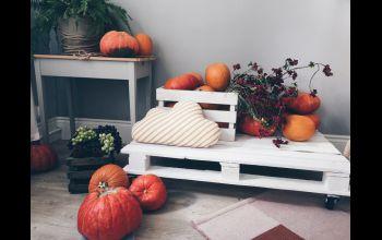Poduszki paletowe – niezbędniki ogrodowych majsterkowiczów