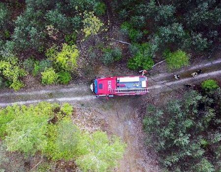 Podpalacz lasu namierzony przez drona