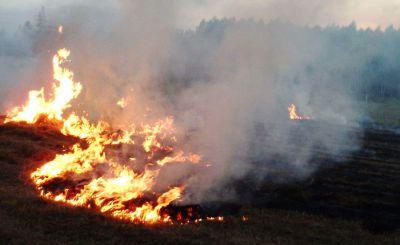 Tak się kończy wypalanie trawy