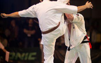 Karatecy pokazali klasę