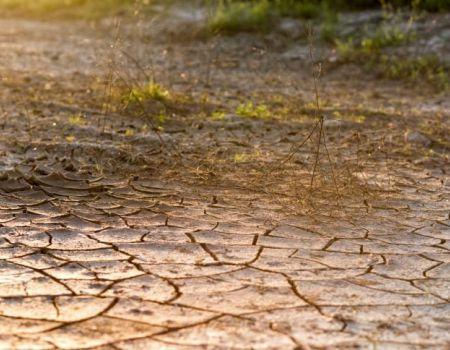 Gmina Czarnocin: Woda - nasze złoto. Dbajmy o nią!