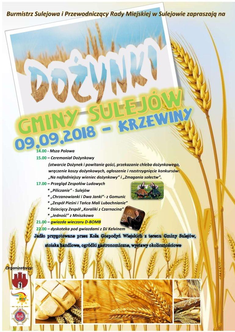 Dożynki w gminie Sulejów. Gwiazdą D-Bomb