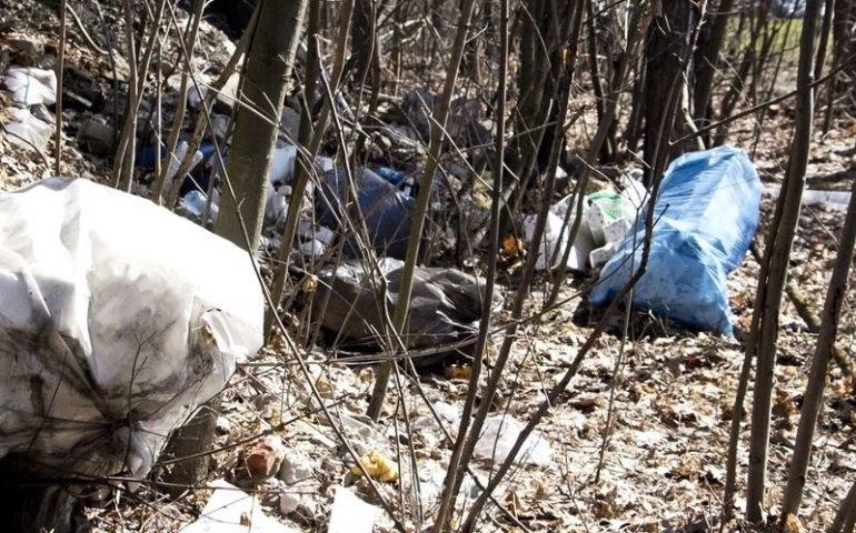 Trash Challenge w Piotrkowie