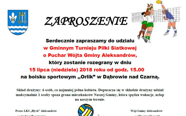 Turniej siatkówki w Dąbrowie nad Czarną