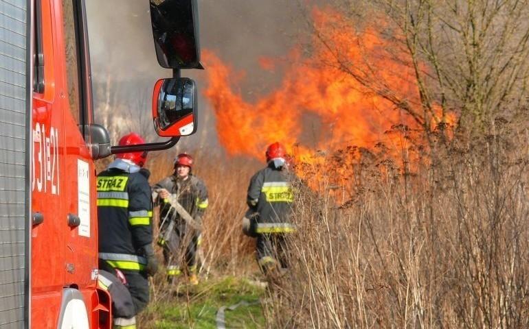 Pożar hali produkcyjnej w Piaskach