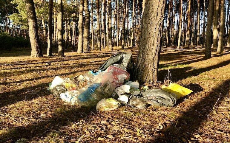 Śmieci w lasach to nadal poważny problem | fot. pakwi