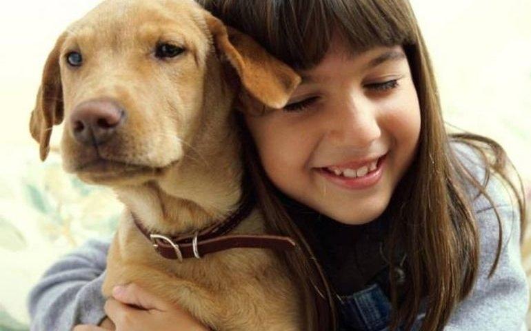 fot. FB Traktuję psa jak członka rodziny