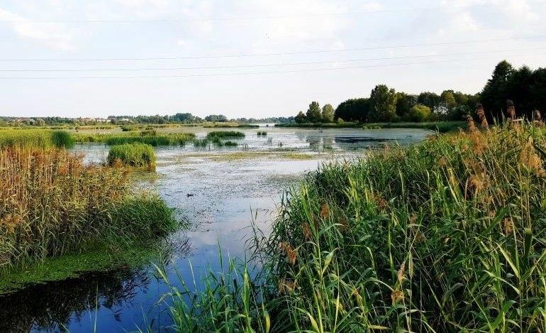 Zagospodarowanie jeziora Bugaj. Jest koncepcja, teraz walka o dofinansowanie
